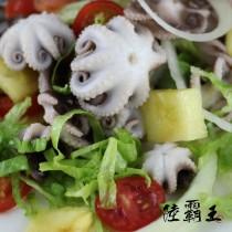 ☆生鮮小章魚☆烤肉 涼拌 淨重240g/包【陸霸王】