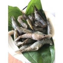☆溪蝦☆長5~7CM 老饕的最愛 500G/包【陸霸王】