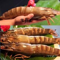超巨大☆深海霸王海草蝦☆ 3尾裝草蝦。手臂蝦 媲美龍蝦【陸霸王】