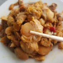【陸霸王】☆三杯帆立貝☆帆立貝 猴頭菇 杏鮑菇 完美結合