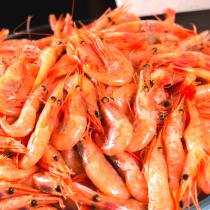 北極熟甜蝦 免運組 鮮甜無敵好吃 涼拌美味推薦 $93起