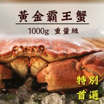 【巨無霸黃金霸王蟹】超級螃蟹 每隻重1到1.2公斤【新品上市】【陸霸王】