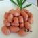 小肉豆 1kg±10%/包 料理 炸物 早餐小點【陸霸王】